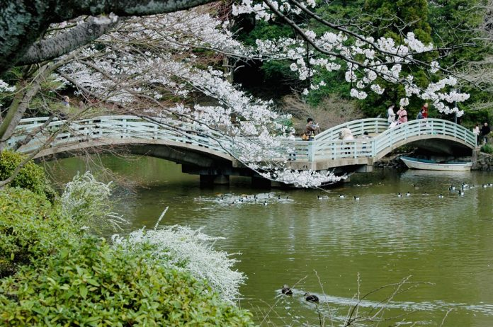 位於東京都町田市的「町田藥師池公園四季彩乃杜西園」是著名旅遊勝地之一,戶外踏青成為疫情期間的首選