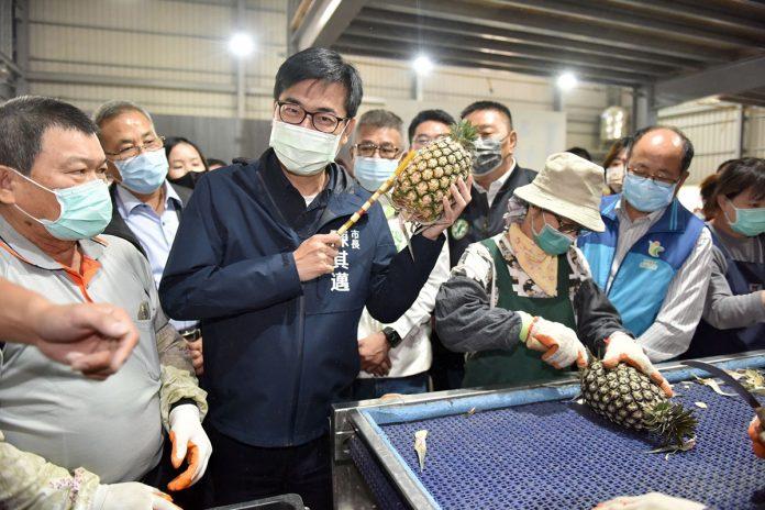 高雄史上首次!金鑽鳳梨銷韓國 陳其邁:拓展外銷市場 力挺在地農民